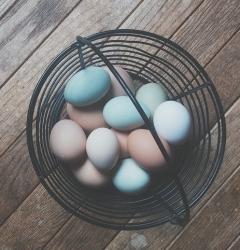 easter-eggs-828955_640.jpg